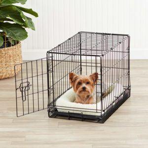 Welche Hundebox Modelle gibt es in einem Testvergleich?