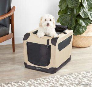 Häufige amazon Nachteile vieler Produkte aus einem Hundebox Test und Vergleich