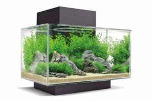 Diese Testkriterien sind in einem Aquarium Vergleich möglich