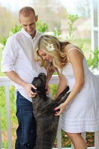Auf diese Tipps müssen bei einem Hundehaftpflichtversicherung Testsiegers Kauf achten?