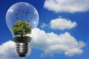 Gestellte Fragen zu Stromtarifen im Test und Vergleich