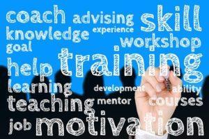 Welche Talentmanagement Modelle gibt es in einem Testvergleich?