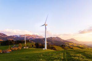 Die Ergebnisse von Stiftung Warentest zum Thema Stromanbieter im Überblick