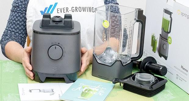 Springlane Hochleistungsmixer Hanno im Test - hat für deine tägliche Ladung Smoothieglück ein praktisches Rezeptheft mit zahlreichen Rezeptideen gleich mit im Gepäck