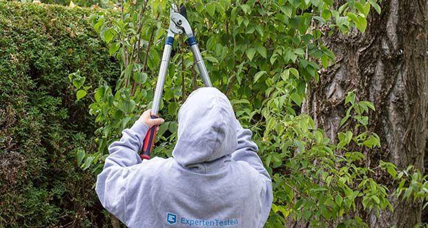 Spear & Jackson Razorsharp Teleskop-Amboss-Astschere im Test - ideal für dickere, abgestorbene oder verholzte Äste und Zweige