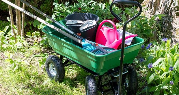 Izzy Sport Bollerwagen im Test - ist der optimale Helfer für Ihre Gartenarbeiten