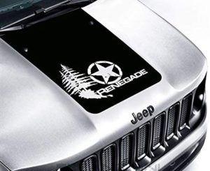 Kurzinformation vom Jeep Renegade im Test und Vergleich