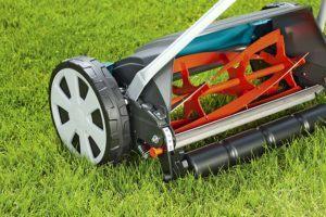 Ein Spindelmäher zeichnet sich durch seiner praktischen Eigenschaften unter herkömmlichen Rasenmähern als besonders leistungsstark aus. Er ist platzsparend, umweltfreundlich und schafft einen präzisen Rasen.