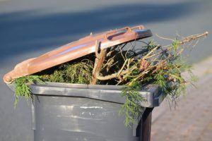 Guter Kostenvoranschlag für Grünschnitt entsorgen