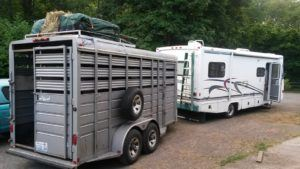 Guter Kostenvoranschlag für Pferdetransport
