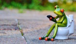 Guter Kostenvoranschlag für Toilette einbauen