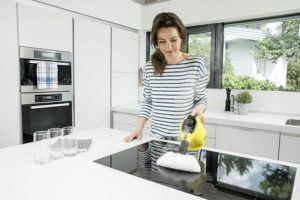 Handdampfreiniger sind ideal um kleine Flächen schnell und effektiv zu reinigen.