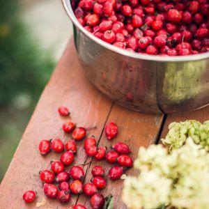 Unter den Teesorten ist die Hagebutte ein absoluter Klassiker. Viele schätzen den wohltuenden Geschmack und die positiven Effekte auf den Körper.