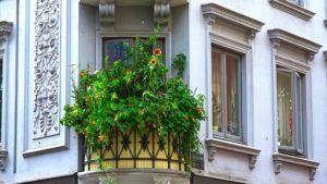 Vergleich: Balkon abdichten Kosten