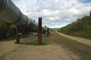 Günstiger Handwerker für Gasleitung verlegen