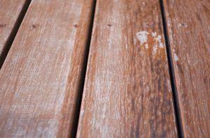 Gutes Angebot für Holzdecke lackieren