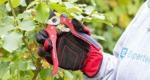 Auf diese Schwachstellen muss man bei einem Gartenscheren Testsieger Kauf achten