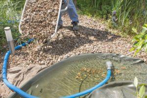Wie viel kostet Teich im Garten anlegen