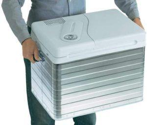 Mit der Kühlbox in der richtigen Größe lassen sich unterwegs wohltemperierte Speisen zum romantischen Picknick servieren.
