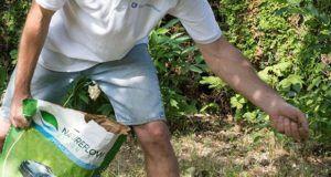 Worauf beim Kauf von Rasensamen sonst noch zu achten ist