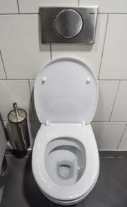 Guter Kostenvoranschlag für Toilette austauschen