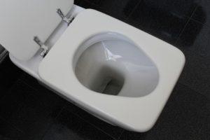Guter Preis für Toilette austauschen