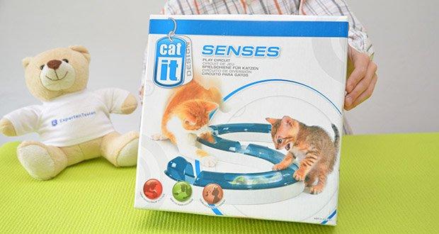 Catit Design Senses Play Circuit im Test - fördert den Spieltrieb und die Agilität