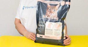 Wie ist der Test von Stiftung Warentest zu Katzenfutter?