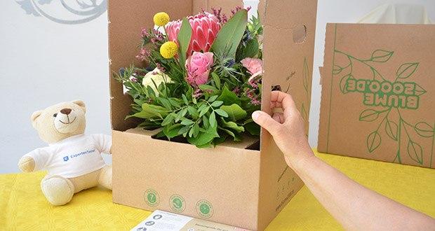 Blume2000 Blumenstrauß Festival des Sommers im Test - Blumensorten: Alstromerien, Disteln, Strandflieder, Nelken, Protea, Rosen, Pistazie, Salal, Craspedia