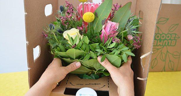 Blume2000 Blumenstrauß Festival des Sommers im Test - diese Schönheit lässt sich zu jedem Anlass verschenken