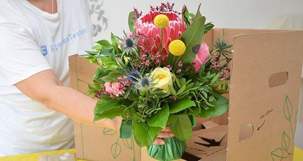 Blume2000 Blumenstrauß Festival des Sommers im Test - Blumenfrisch ins Wasser geben; direkte Sonneneinstrahlung vermeiden; täglich Wasser nach gießen