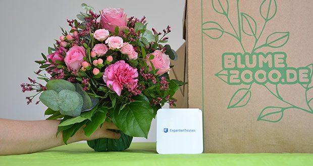 Blume2000 Blumenstrauß Schön, dass es Dich gibt im Test - Pistazien- und Eukalyptuszweige verleihen dem Blumenstrauß den letzten Schliff, indem die zarten Blättchen zwischen den Blüten keck hervorschauen
