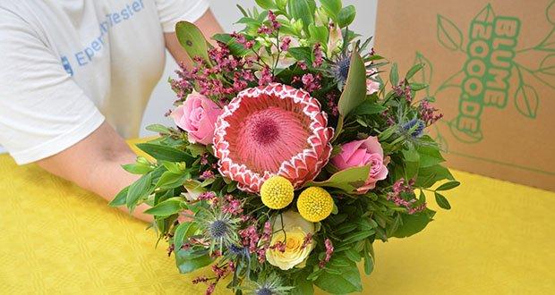 Blume2000 Blumenstrauß Festival des Sommers im Test - lass dich von diesem hübschen Anblick begeistern oder überrasche einen Herzensmenschen mit diesem tollen Strauß