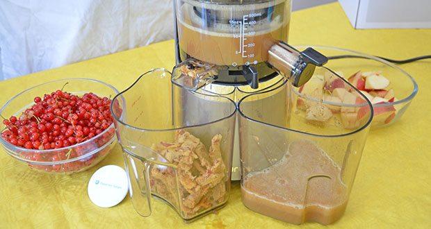 Hurom Slow Juicer S13 im Test - durch das besonders haltbare Material genießen Sie für lange Zeit Säfte in ihrer reinsten Form
