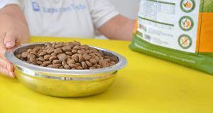 Geschmacksverbesserer bei Hundefutter im Test und Vergleich