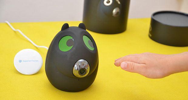 Safe2Home Funk Alarmanlage OTTO im Test - die Augen sind beweglich, können die Farbe wechseln und folgen oder zwinkern dem Besitzer zu